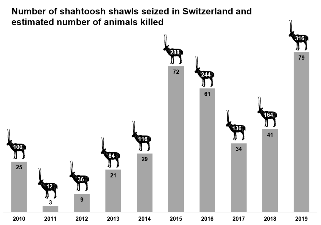 Number of shahtoosh shawls seized in Switzerland and estimated number of animals killed